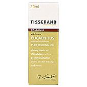 Tisserand Eucalyptus Essential Oil