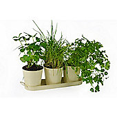 Grow Your Own Herb Kit - Trio of Metal Herb Pots Set with Tray & Seeds