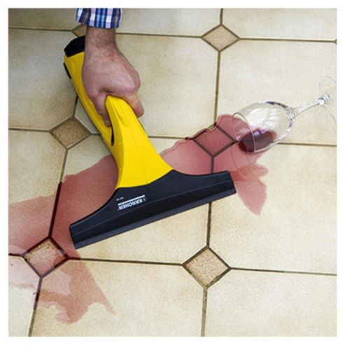Karcher WV60 Window Vac