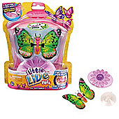 Little Live Pets - My Butterfly - Wildy Wings