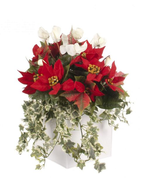 Artificial Red Poinsettia, White Cyclamen and Variegated Ivy Display in a Gloss White 20cm Square Planter