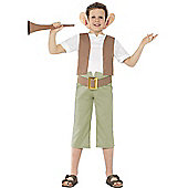 Roald Dahl BFG - Child Costume 7-9 years