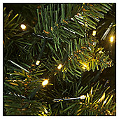 1000 Treebrights LED Christmas Lights, Warm White