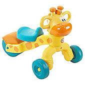Rollin Giraffe Giraffe GoGrow