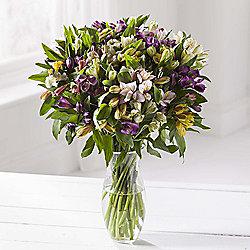 Rainbow Alstroemeria Bouquet