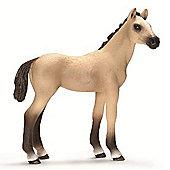 Schleich Akhal-Teke Foal 13702
