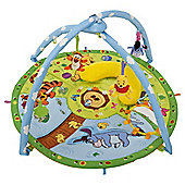 Winnie the Pooh Magic Motion Playgym