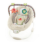 Bright Starts Comfort & Harmony Cradling Bouncer In Cozy Kingdom