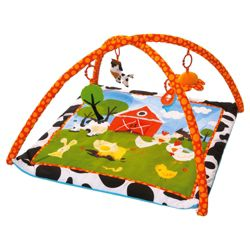 Red Kite Farm Baby Activity Play Gym