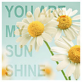 You Are My Sunshine Printed Canvas 40 x 40cm