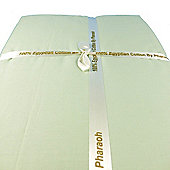 2 Pk Pharaoh 100% Egyptian Cotton 200T Cot Fitted Sheet 60x120cm Green