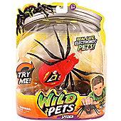 Wild Pets Spider - Eyegore