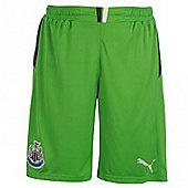 2013-14 Newcastle Home Goalkeeper Shorts (Green) - Green