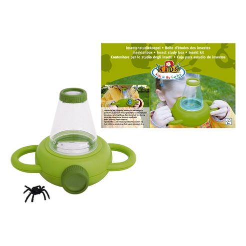 Fallen Fruits Insect Study Box