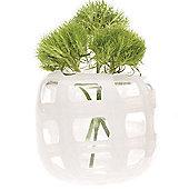 Home Essence Black and White Vase - White