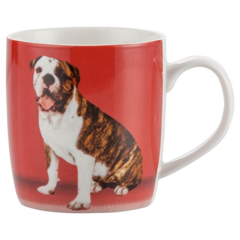 Tesco Single Porcelain Pet Mug, Red