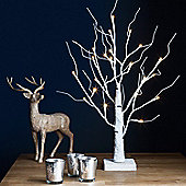 60cm Indoor Pre-Lit LED White Birch Tree