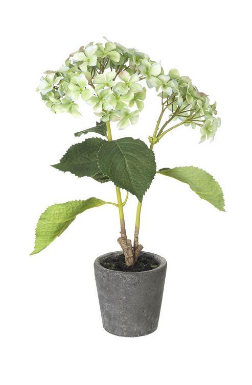buy parlane artificial potted hydrangea plant 43 x 30cm. Black Bedroom Furniture Sets. Home Design Ideas