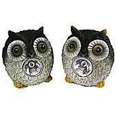 Long Eared Solar Owl Garden Spotlights (Twin Pack)