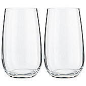 RCR Everyday Crystal Water Glass 2 pack