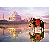Elephant at Taj Mahal - 1000pc Puzzle