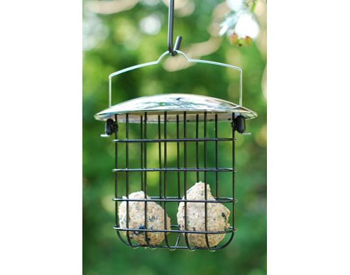 Heavy duty suet feast feeder - chrome