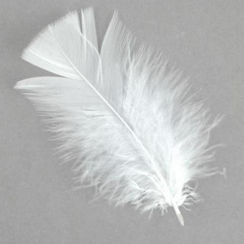 Fred Aldous Feathers - White