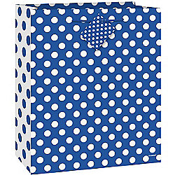 Blue Polka Dot Gift Bag