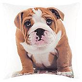 Novelty Dog Cushion