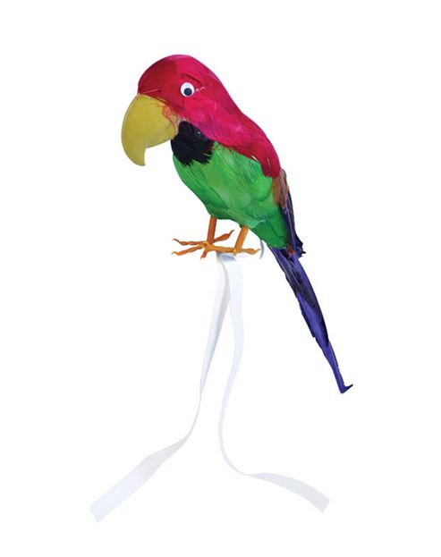 Feathered Parrot - 42cm