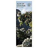 Kew in Colour 2016 Slim Calendar