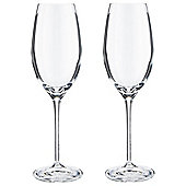 RCR Everyday Crystal Champagne Glas,s 2 pack