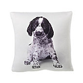Parlane Square Cute Puppy Cushion - 30cm