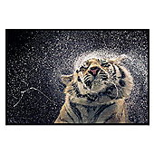 Tim Flach Gloss Black Framed Kanja Poster