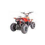 110cc Thunder Cat Quad Bike Red