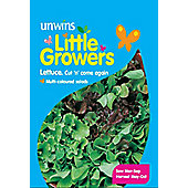Little Growers Lettuce Cut & Come Again Mixed Leaves