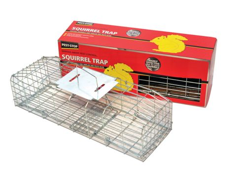Procter Psscage Squirrel Trap