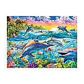 Dolphin Paradise Puzzle