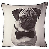 Pug Dog Photographic Novelty Cushion