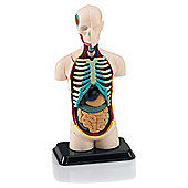 Revell X-Ray Human Body Anatomy Model