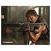The Walking Dead Mini Poster, 50x40cm