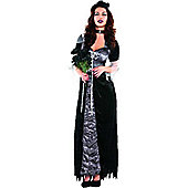 Evil Maiden - Adult Costume Size: 12-14