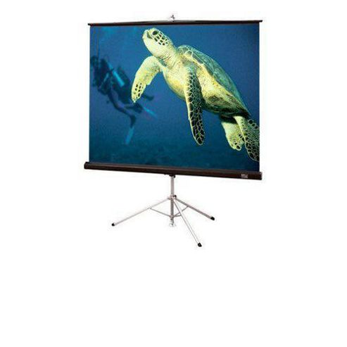 Draper Diplomat Tripod 96 x 96 inch AV Portable Projection Screen - Matt White