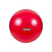 GoFit Gym ball with Pump, Ball Plugs & Poster - 55cm RED