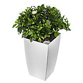 Terrastyle Algarve Tall Square Planter (Set of 2) - White - 42 cm H x 25 cm W X 25 cm D