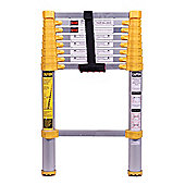 Xtend+Climb Plus Series Home 2.7m Telescopic Ladder