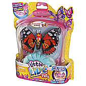 Little Live Pets Butterfly Wicked Wings