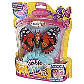 Little Live Pets Butterfly Wicked Wings
