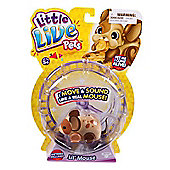 Little Live Pets Lil' Mouse - Crumbs *CHECK NAME* *CHECK COLOUR*