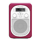 Pure Evoke D2 Mio with FM, DAB and Bluetooth in Raspberry